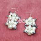 Wholesale pearl shell earrings